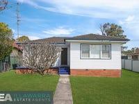 22 Malin Road, Oak Flats, NSW 2529
