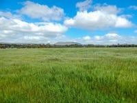 Lot 15, 5897 Flinders Highway, Coulta, SA 5607