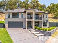 41 Fitzwilliam Circuit, Macquarie Hills, NSW 2285