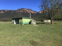 102 The Gullies Rd, Glen Davis, NSW 2846
