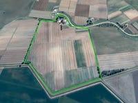 Farm 1015, 225 Citrus Drive, Coleambally, NSW 2707