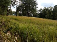 Lot 48 Upper Coomera Road, Witheren, Qld 4275