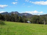794 Barrington West Rd, Barrington, NSW 2422