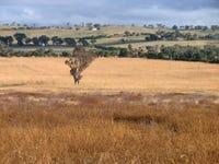 575 Wirrimah Road, Wirrimah, NSW 2803