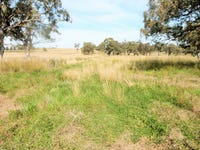 Lot 127, Lot Hall Road, Merriwa, NSW 2329