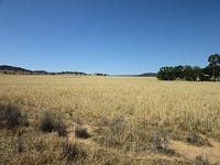 Lot 2 'Alvin' Ridge Street, Attunga, NSW 2345