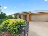 16 Ludovic Marie Ct, Nagambie, Vic 3608