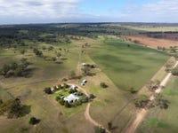 165 Laheys Creek Road, Dunedoo, NSW 2844