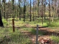 193 Glens Creek Road, Nymboida, NSW 2460