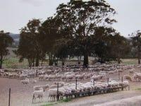 3247 Wargeila Road, Rye Park, NSW 2586