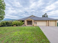 20 John Howe Circuit, Muswellbrook, NSW 2333