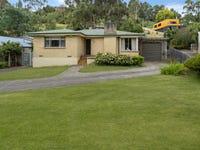 68 Basin Road, West Launceston, Tas 7250