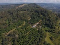 1005 Tuntable Creek Road, Nimbin, NSW 2480