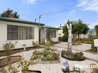 58 East Barrack Street, Deloraine, Tas 7304