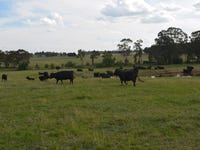 1566 Golspie Road, Taralga, NSW 2580