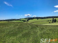 885 Berrys Creek Road, Mirboo North, Vic 3871