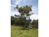 9807 Thunderbolts Way, Nowendoc, NSW 2354