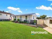 107 Sadleir Avenue, Ashcroft, NSW 2168