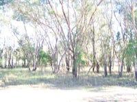 Lot 153, Ropers Road, Binnaway, NSW 2395