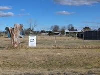 17 Cadell Street, Deepwater, NSW 2371