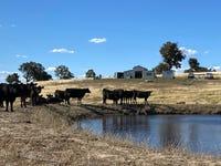105 Cuddyong Road, Binda, NSW 2583