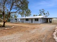 319 Caddy Road, Loveday, SA 5345