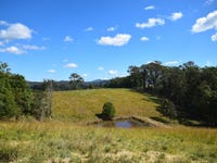 Lot 4, Goulds Road, Utungun, NSW 2447