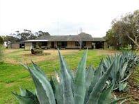 17809 Dukes Highway, Bordertown, SA 5268