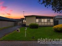 42 Andrew Avenue, Holden Hill, SA 5088