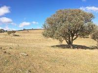 Bulley's Crossing Road, Biala, NSW 2581