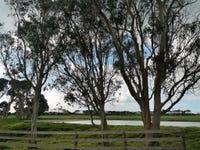232 Fraser Road, Nugara, Tas 7256