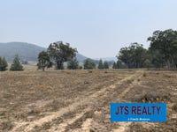 366 - Lot 75 DP 7509 Worondi Creek Road, Gungal, NSW 2333