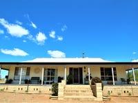 20 Hillside Lane, Gulgong, NSW 2852
