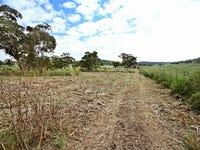 Lot 145 Golden Highway, Cassilis, NSW 2329