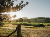147 Beaury Creek Road, Urbenville, NSW 2475