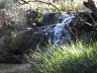 551 Barretts Creek Rd, Barretts Creek, NSW 2460
