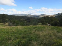 3718 Taylors Arm Rd, Burrapine, NSW 2447