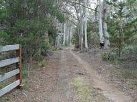 237 Elephant Pass Road, St Marys, Tas 7215