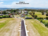 Stage 3 PINOT PARADE, Youngtown, Tas 7249