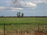 """ Woodlands"", Coolabah, NSW 2831"