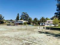 Lot 1, Milham Street, Lake Conjola, NSW 2539