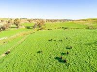 395 Old Yullundry Road, Cumnock, NSW 2867