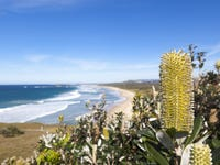 Lot 529, 25 Somervale Road, Sandy Beach, NSW 2456