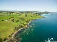 17328 Bass Highway, Boat Harbour, Tas 7321