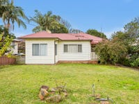 14 Bassett Street, Fairy Meadow, NSW 2519