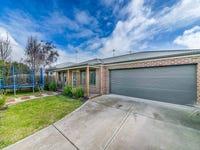 113 Kildare Street, North Geelong, Vic 3215