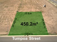 Lot 209 Tumpoa Street, Fletcher, NSW 2287