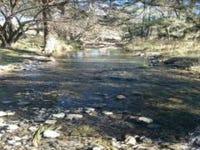 Cuerindi Creek Track, North Tamworth, NSW 2340