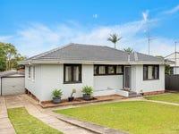 16 Albert Street, Lake Illawarra, NSW 2528