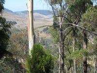 151 Link Road, Colebrook, Tas 7027